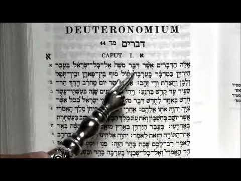 כל מי שמדבר נגד התורה בכלל לא קרא אותה 📖אפילו פעם אחת! הכל נובע מבורות.. הרב יוסף מזרחי