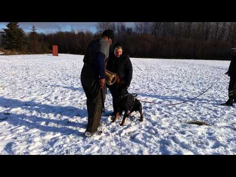 Opie protection training 10-26-14