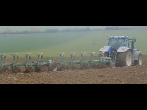 Labour dans la Marne 2013