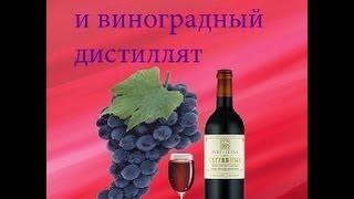 Делаем вино и виноградный дистиллят (сорт Лидия)