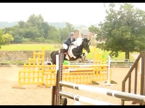 Gleiniant Pippi Longstocking Double Clear BSJA Discovery Northcote Stud