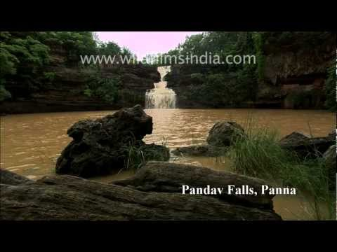 Waterfalls of India (mostly Madhya Pradesh!)