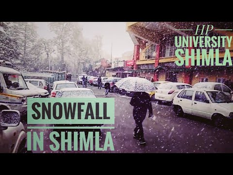 Snowfall in HPU Shimla ll March 2017