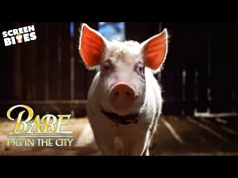 """Babe: Pig in the City"" - Official Trailer"