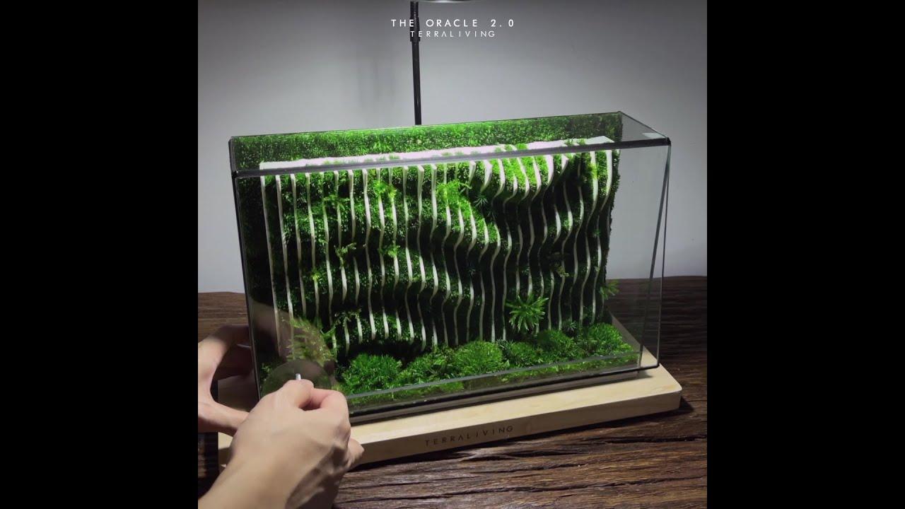 TerraLiving's Desktop Parametric Moss Wall Sculpture - The Oracle 2.0