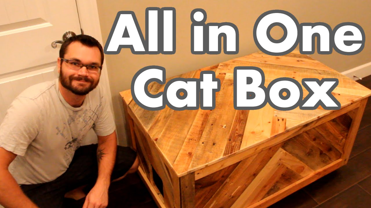 Diy cat box cabinet evanandkatelyncom Enjoy All In One Cat Box Out Of Pallet Wood Lovethispic All In One Cat Box Out Of Pallet Wood Youtube