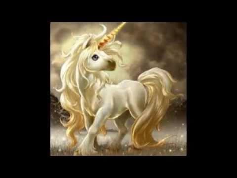 Unicorni