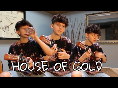 HOUSE OF GOLD- TWENTY ONE PILOTS COVER