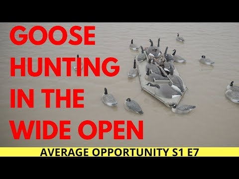 Goose Hunt In A Layout Boat. New Tactic For Stale Birds