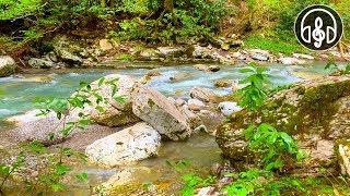 Расслабляющий шум горной реки. СНИМАЕТ УСТАЛОСТЬ, НОРМАЛИЗУЕТ СОН!