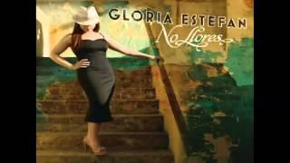Gloria Estefan - No Llores (Album Version)