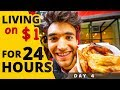 LIVING on $1 for 24 HOURS in NYC! (Day #4)