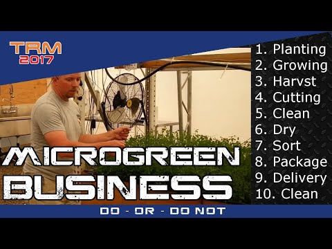 Help Wanted - How to increase microgreen production processing efficiency?