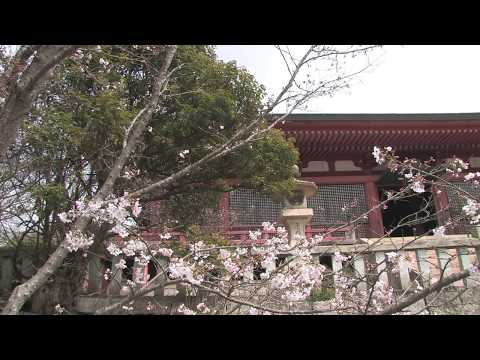 Japan 2013 : Anyo-in  Hyogo prefecture