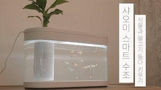 샤오미 스마트 수조 #1 | 식물과 물고기 둘다 키우기 | 아쿠아포닉스 [vlog] | Xiaomi Geometry Fish Tank | Aquaponics