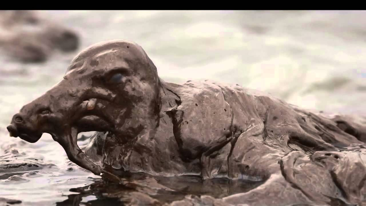 Oil Spills and Water Pollution - YouTube