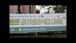 새마을운동!! 미세먼지 줄이기 팻 플랜트-공기정화식물 …