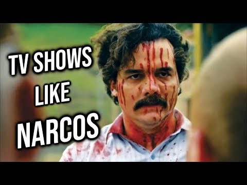 Top 10 TV Shows like Narcos