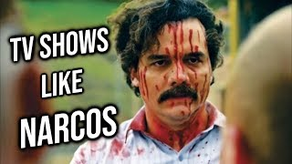 Top 10 TV Shows like Narcos who have a Main character like Pablo Escobar