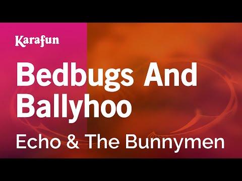 Karaoke Bedbugs And Ballyhoo - Echo & The Bunnymen *