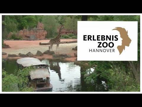 Erlebnis Zoo Hannover Impressionen | Felix Unterwegs Folge 8 | 1080p HD