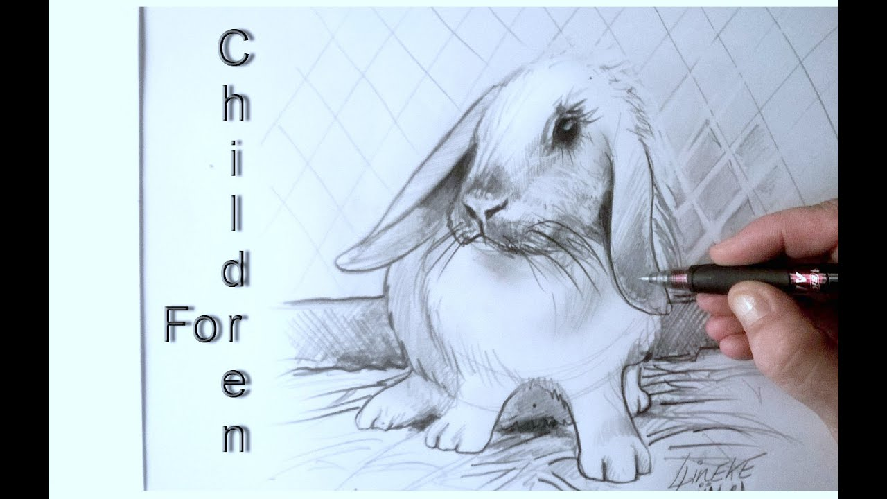 Easy Rabbit For Beginners Graphite Pencil Drawing Youtube