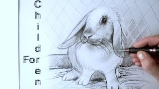 Drawing a RABBIT or bunny in graphite pencil easy for beginners