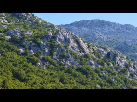 Cantus Firmus Monks - Croatia Nature. Nature´s Music