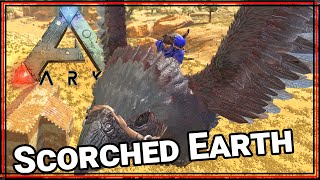 ★ Tame a bird. Again. - ARK Survival Evolved Scorched Earth single player - ARK Scorched Earth pt 8