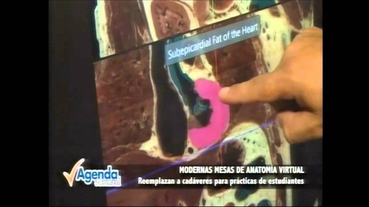 Mesas de Visualización y Disección Sectra en Perú - YouTube