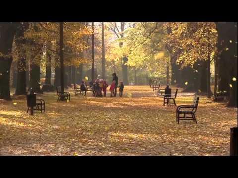 Der Herbst ,der Herbst ,der Herbst ist da ... Kinderlied gesungen von Simmi
