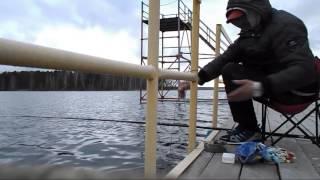видео ЛЕСНОЕ ПОМЕСТЬЕ база отдыха, озеро Акакуль