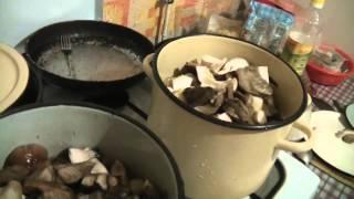 Съедобные грибы. Приготовление.