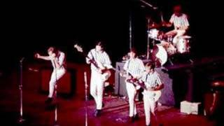 the beach boys - original instrumental 1965