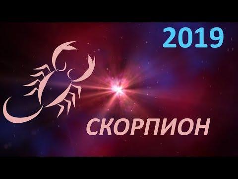 Гороскоп скорпион года предсказывает хлопотное время, когда придется и о себе заботиться, и о родственниках, и работать с утра до ночи.