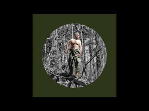 The Hidden Cameras - Log Driver's Waltz (Audio)