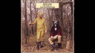 Midlake - Van Occupanther [HD]