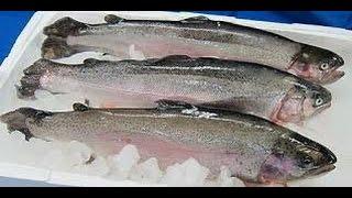 Чем отличается замороженная рыба от охлажденной(Сбор для лечения ЖКТ http://goo.gl/rlwtwW Посмотрев это видео вы узнаете в чем разница замороженной рыбы от охлажден..., 2015-01-28T10:01:34.000Z)