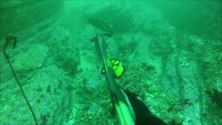 Montana de Oro, Scuba Diving and Spearing California