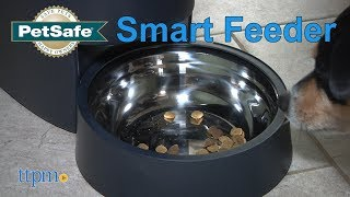 Smart Feed from PetSafe