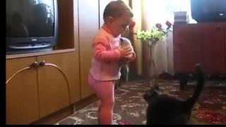 Мама   сиамская  кошка отняла своего котенка у ребенка