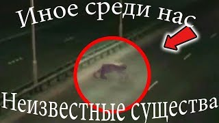 Иное среди нас - НЕИЗВЕСТНЫЕ СУЩЕСТВА 10 Выпуск