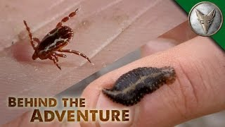 YUCK! Avoiding Ticks and Leeches
