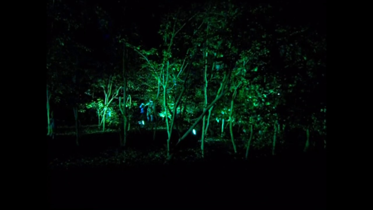 Descanso Gardens Enchanted Forest Of Light Youtube