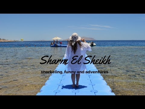 Sharm El Sheikh: snorkeling, funny and adventures