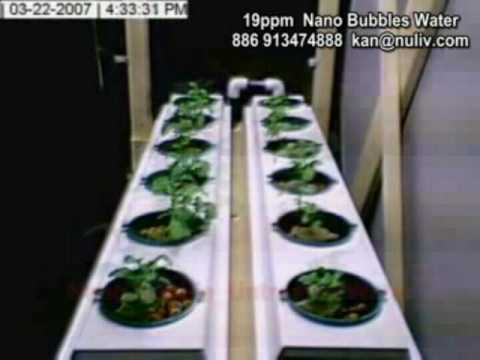 20121107 oxygen and air nanobubble wate 20121107 oxygen and air nanobubble wate essay oxygen and air nanobubble water solution promote the growth of plants,  hyperbaric oxygen therapy.