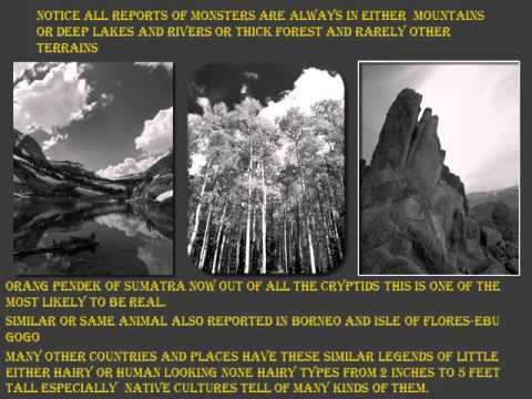 History of sasquatch documentary part 7