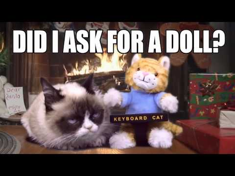 Grumpy Cat Gets The Keyboard Cat Toy For Christmas!