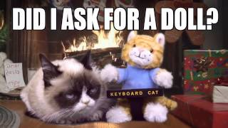 Repeat youtube video Grumpy Cat Gets The Keyboard Cat Toy For Christmas!