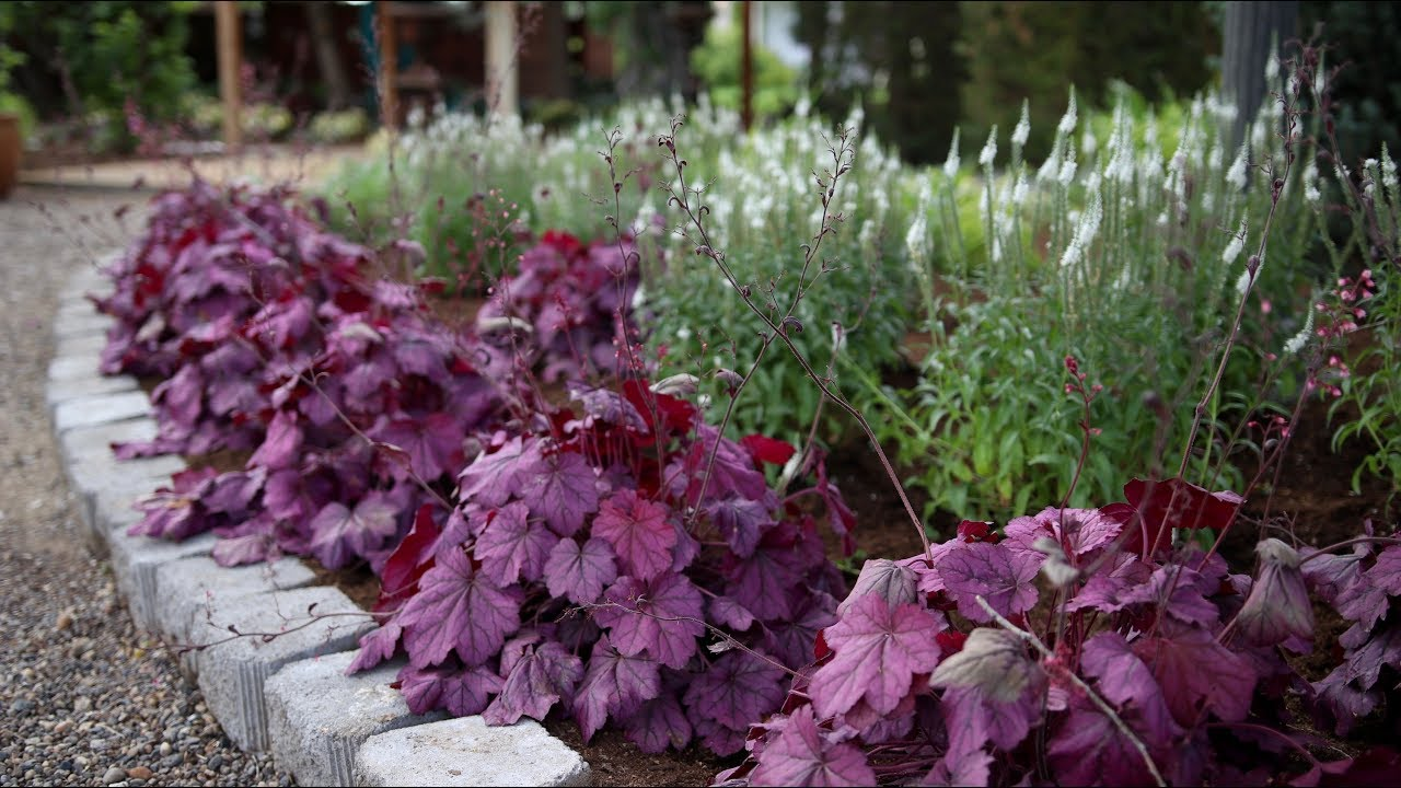 Planting A New Flowerbed Garden Answer